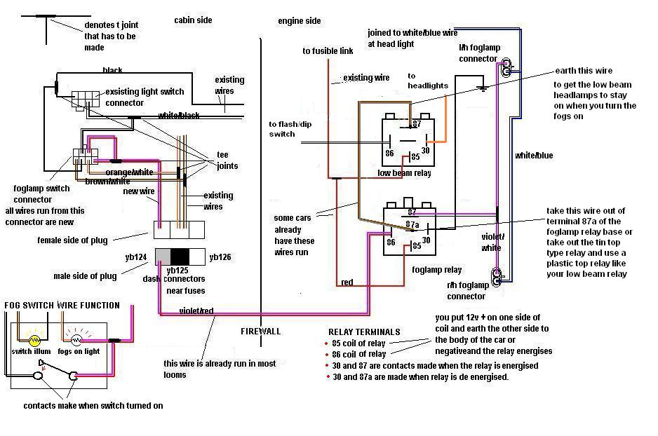 vr vs fog lamp wiring diagram just commodores fog lamp wiring diagram at creativeand.co
