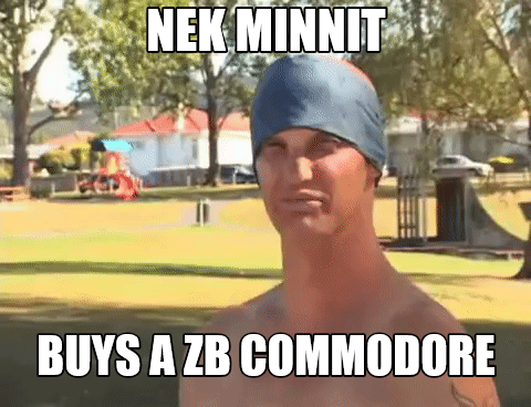 ZB .png
